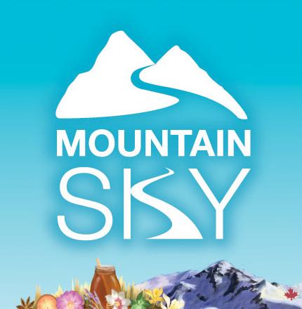 Mountain Sky 3x3 logo web